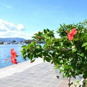Круиз по трем островам: Эгина, Порос, Идра