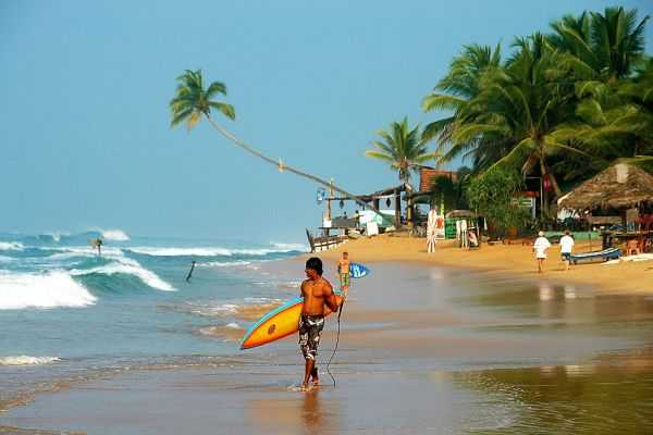 Цейлон - знаменитый чайный остров Индийского океана