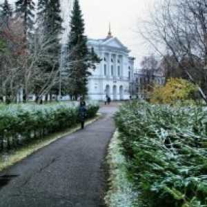 Сибирские Афины - город Томск