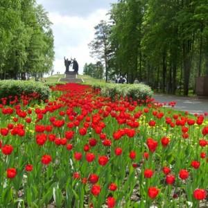 Моё знакомство с колоритным городом Томском