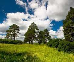 Велопоход к деревне Золотая гора