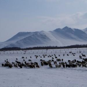 Зимний Байкал превзошел все ожидания!