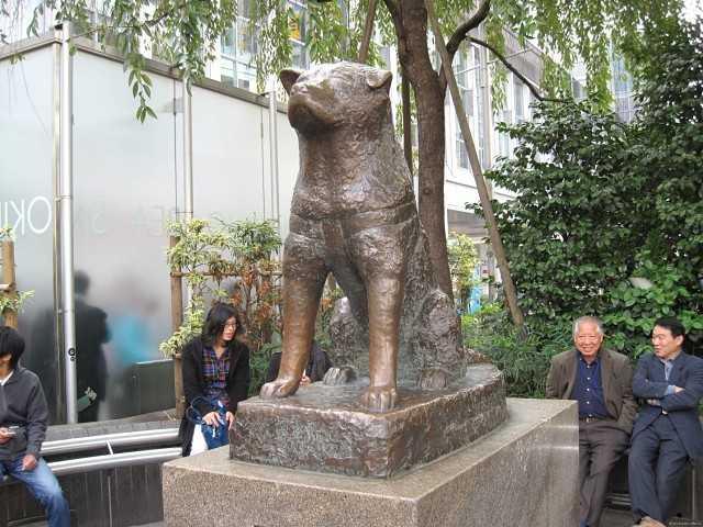 Токио памятник преданности