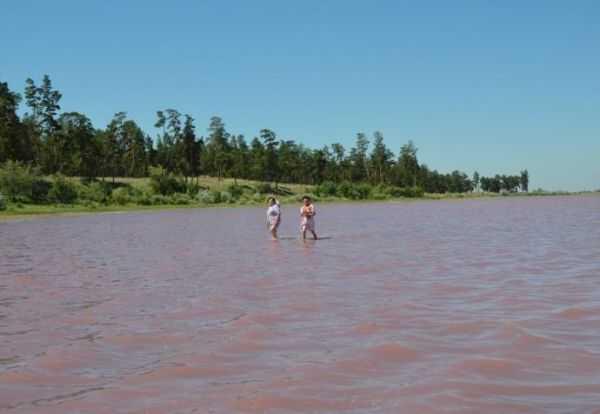 озеро малинового цвета