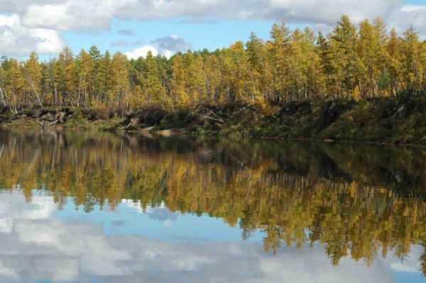 Река нюкжа рыбалка