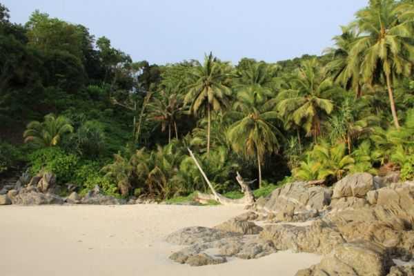 пляж фридом отзывы