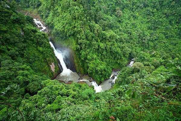 Вся природа Таиланда в национальном парке Кхао Яй