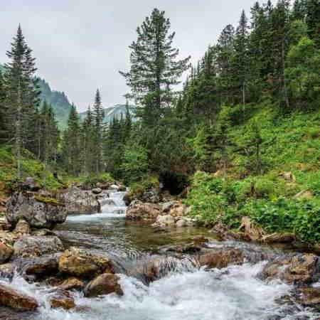 байкальский природный биосферный заповедник