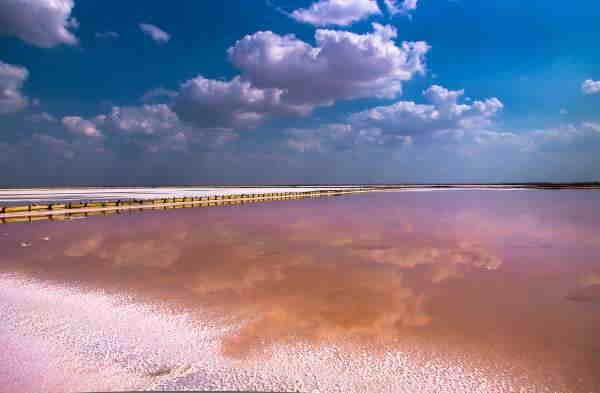озер Сасык Крым