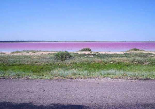 Малиновое озеро Алтайского края