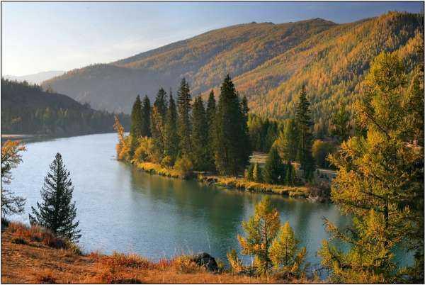 Аргут – река с мужским характером