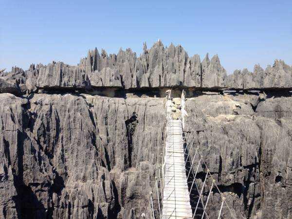 Мадагаскар. Экскурсия в каменные леса Цинги