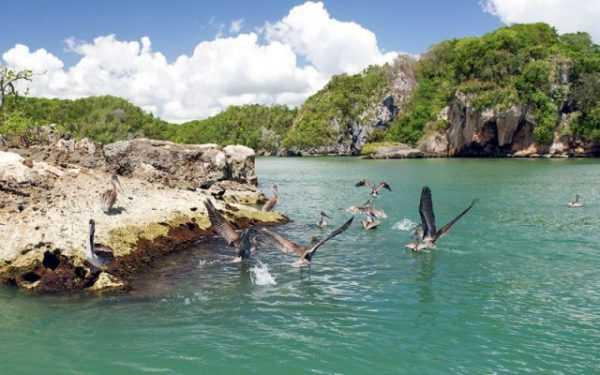 Национальный парк Лос Айтисес в Доминикане