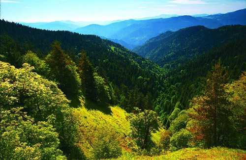 Путешествие по Грузии: Боржоми