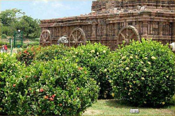 Храм Солнца в Конараке