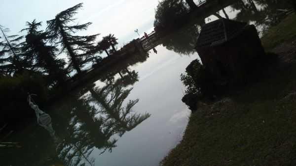 Гагры пруд