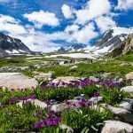 Поездка на Алтай. Тур Актру – Чемал — Телецкое озеро