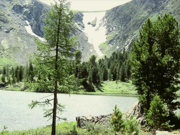 Незабываемое путешествие на Каракольские озера (Горный Алтай)