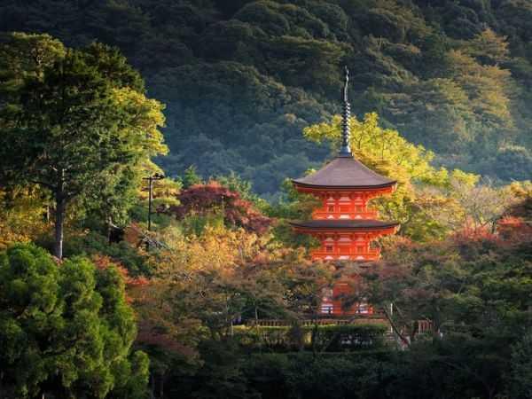 Киото – сердце японской культуры
