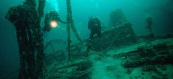 Подводный мир Крыма