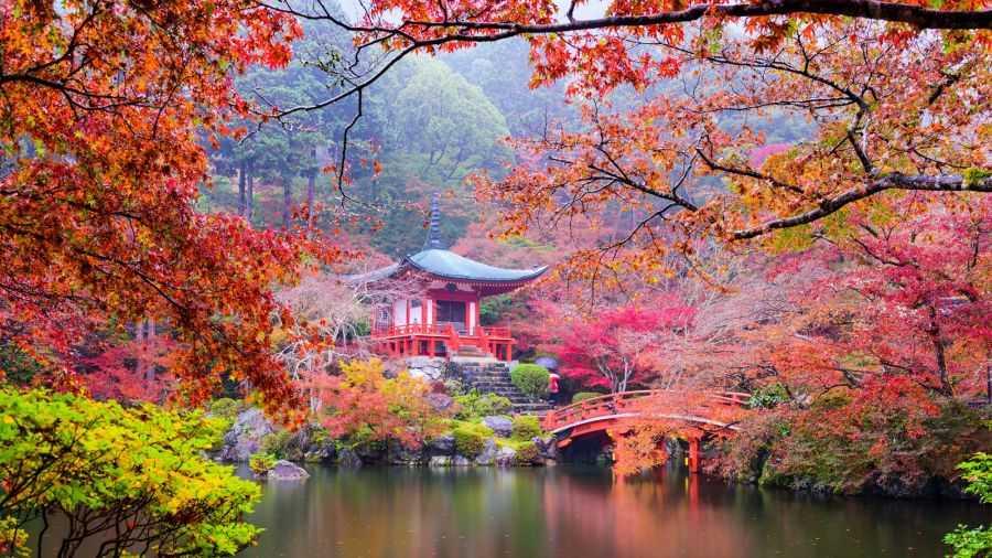 Япония: удивительные факты о стране Восходящего Солнца