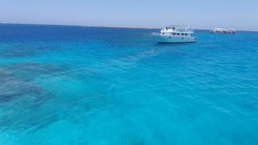 Беззаботный риф и Райский остров в Хургаде