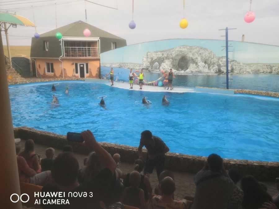 мыс Большой Атлеш дельфинарий