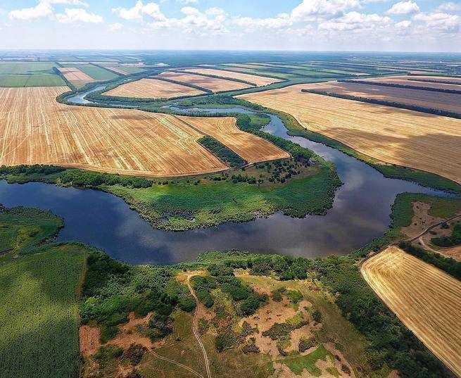 Река Ея. География, флора, фауна, рыбалка