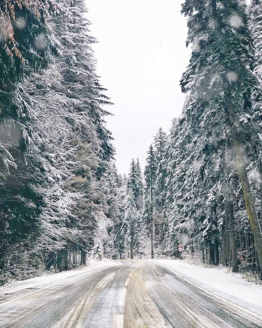 В Домбае выпал снег