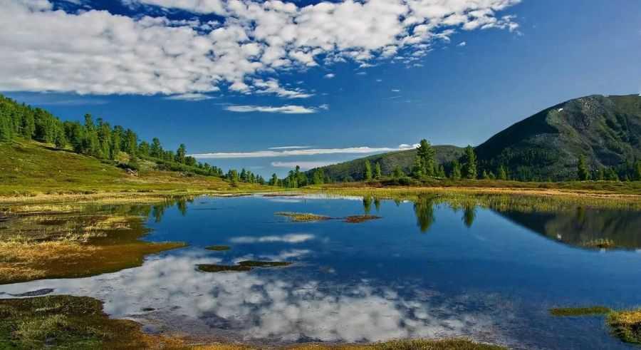 Байкало-Ленский природный заповедник. Описание