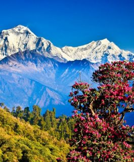 Непал — йети, Гималаи, чортен и другие достопримечательности