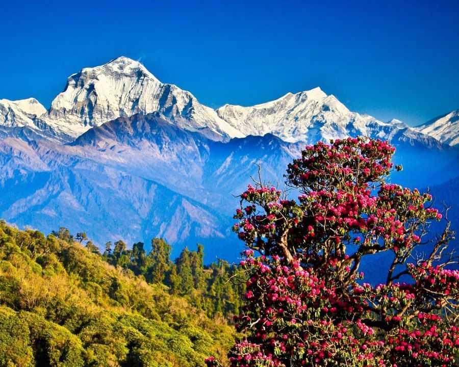 Непал - йети, Гималаи, чортен и другие достопримечательности