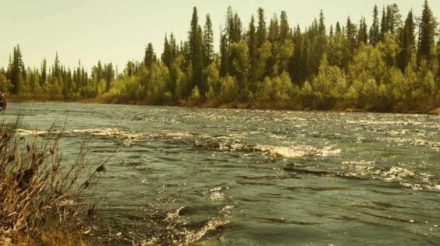 Река Пана