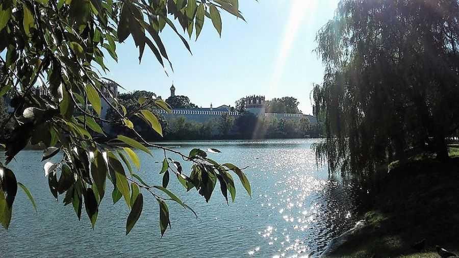 Прогулка в Новодевичий монастырь и парк
