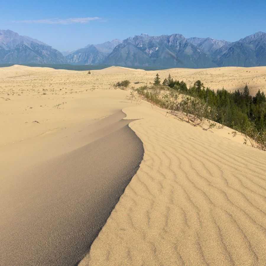 Черские пески