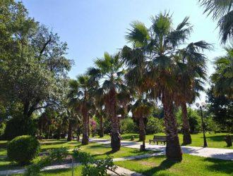 Парк Южные культуры в Адлере. Описание парка