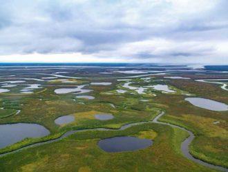 Северо-Сибирская низменность. Описание северного края