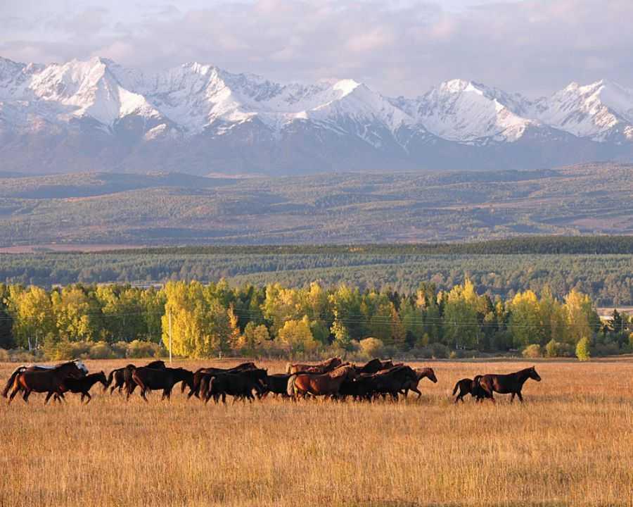Как спланировать отдых на Байкале. ГИД 2021