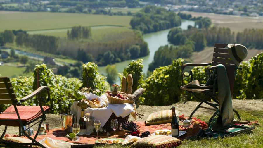 Винные туры во Францию