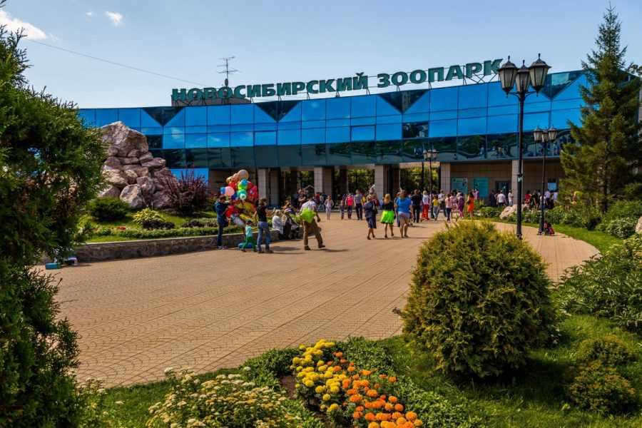 Новосибирский зоопарк. Животные и территория. Фотоотчет