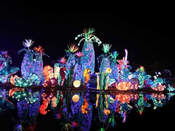 Светящийся парк в Дубае