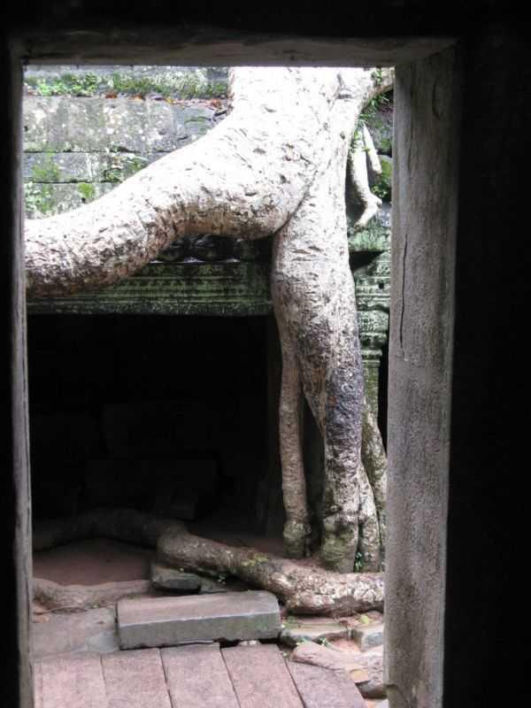 Ангкор Камбоджа