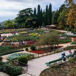 Крым. Никитский ботанический сад. Парк Монтедор